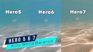 GoPro Hero5 Hero6 Hero7 Underwater Auto White Balance Comparison - GoPro Tip #644