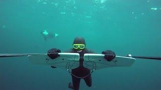 GoPro Awards: Soaring with Orcas