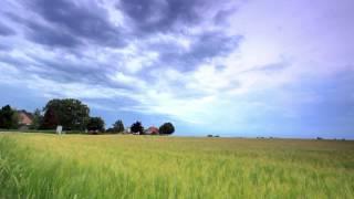 Tracking Shot Of A Field Alongside A Country Road In Copenhagen, Denmark