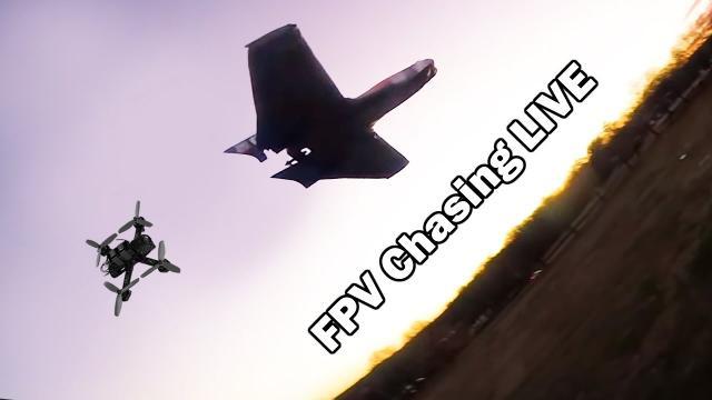 FPV Quad/Wing Chase LIVE