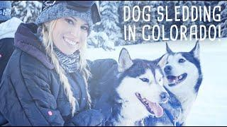 Dog Sledding In Colorado With GoPro Hero