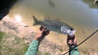 Fly Fishing for Bass 2016 (GoPro Session HD)