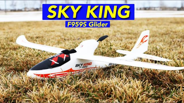 Easy to Fly RC Powered Glider Plane for Beginners - Plenty of Fun!  Sky King F9595 WLToys