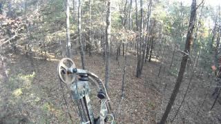 GoPro 960 Bow Hunting Whitetail