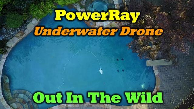 Powervision PowerRay - Out In The Wild - Review and Underwater Footage