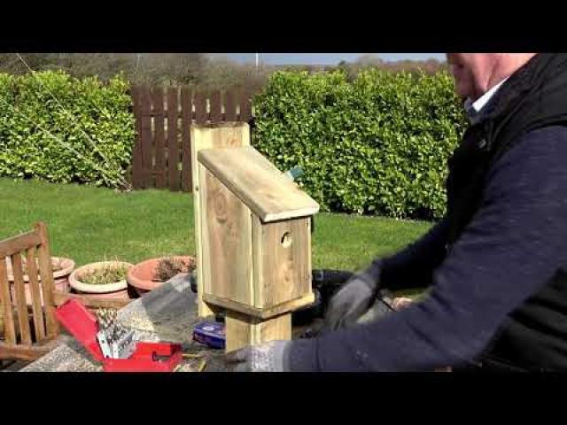 Bird Box DIY Build The Fast Way
