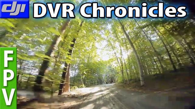 Curvy wood road, DRONE encounters, Fotobombing and a Falcon (Emax HawkPro, DJI Vista 50mbit)
