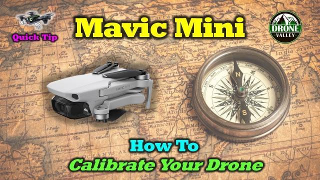 Mavic Mini - How to Calibrate Your Compass & IMU