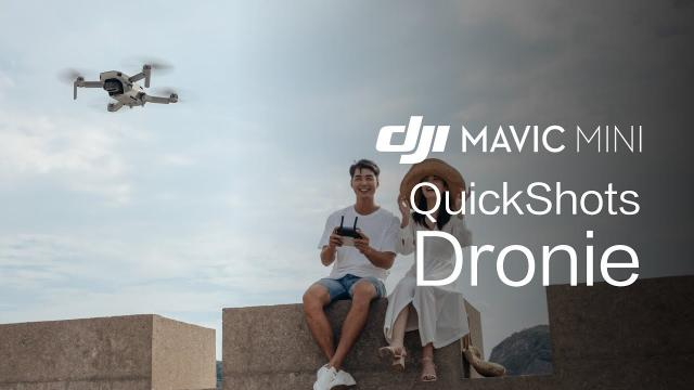 Mavic Mini | How To Perform A