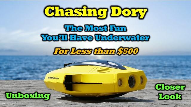 Chasing Dory - An Underwater Marvel for Under $500