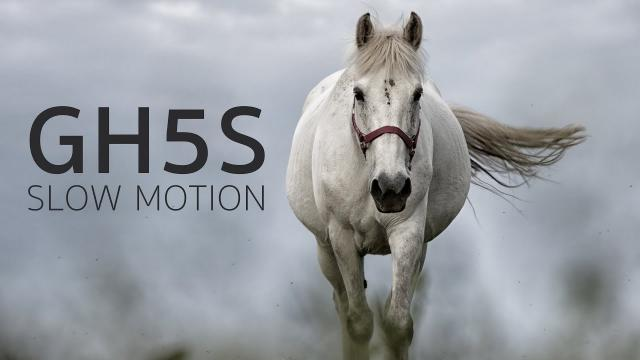 Panasonic Lumix GH5S + DJI Ronin-S | 240fps Slow-Motion Footage
