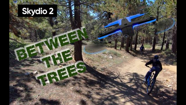 Skydio 2 Between the Trees - Mountain Biking in Mount Pinos
