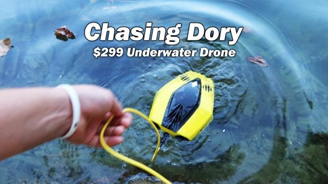 Chasing Dory - $299 Underwater Drone Review