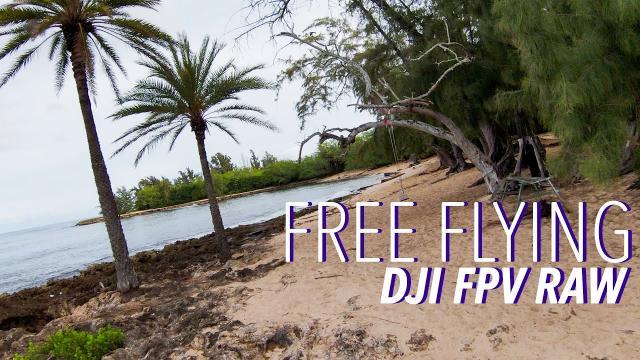 FREE FLYING! DJI FPV 4K RAW 5 Minute Flight!
