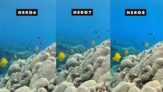 GoPro Hero8, Hero7, Hero6 Underwater Auto White Balance Comparison! - GoPro Tip #657| MicBergsma