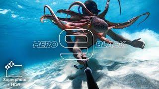 GoPro: HERO9 Black | 20MP Photos