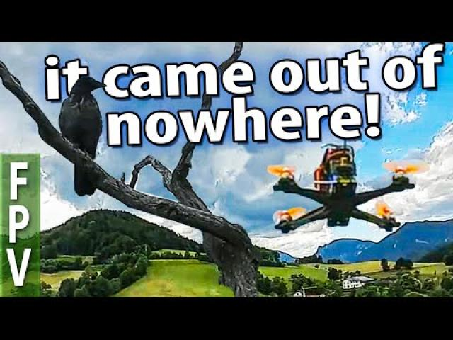 Chased a NZ FPV friend and traced home a hostile Mavic...